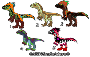 Discount Price Baby Raptor Adopts ~CLOSED by StephsAdopts
