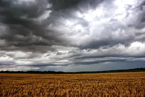 Before the storm by schwarzeKatze18