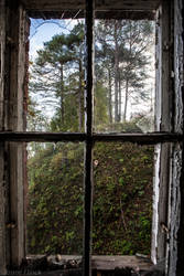 View from Decay by JanneFlinck