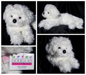 Douglas Cuddle Toys - Marcelle Bichon by The-Toy-Chest