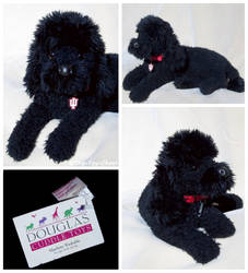 Douglas Cuddle Toys - Toby Poodle by The-Toy-Chest