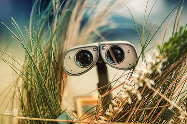 Summerfeeling - Wall.E by strehlistisch