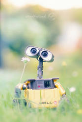 little Dreamer - Wall.E by strehlistisch