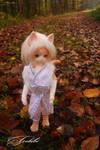 Hey little Hedghog by Tochibi