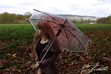 Rainy autumn days by Tochibi