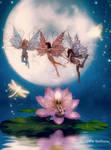 Moondance by Radthorne
