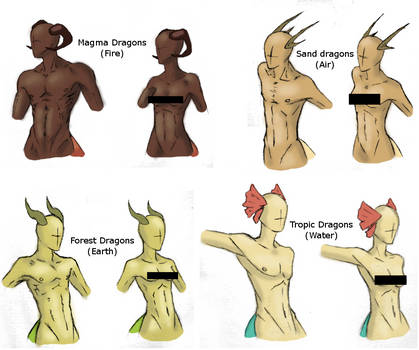 Average Dragon Body Types -Censored ver- by darkqueenarts