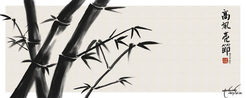 Bamboo 20130621 by XamgnueL