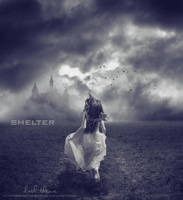 Shelter by Ahmed-R-Shalaby