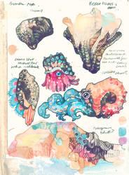Sea creatures - Sketchbook by PaperandDust
