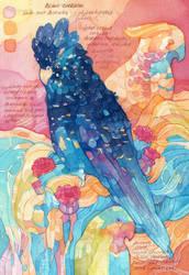 Australian Birds - Sketchbook by PaperandDust