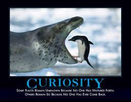 Curiosity by Webupload
