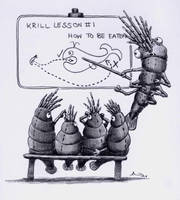 Krill by Windy999