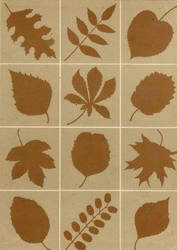 Paper texture: brown leaves by mercurycode