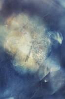 Digital Art Texture 110 by mercurycode