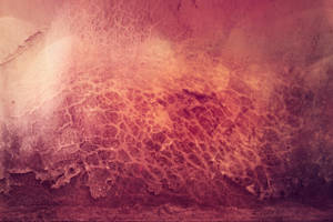 Digital Art Texture 188 by mercurycode