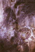 Digital Art Texture 205 by mercurycode