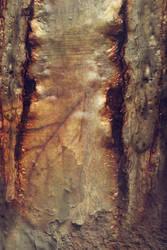 Digital Art Texture 224 by mercurycode