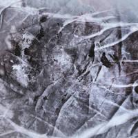Digital Art Texture 239 by mercurycode