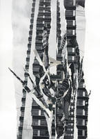 Hightower Rose - Original Paper Collage by mercurycode