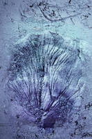 Digital Texture Artwork 351 by mercurycode