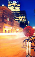 Alone In The City by MyLifeThroughTheLens