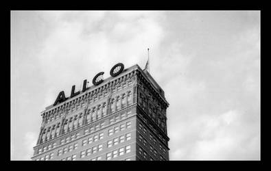 The Alico Building 1 by keglunekdoq
