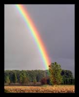 Rainbow by jago1984