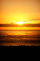 Cloud Ocean by williamdickeson