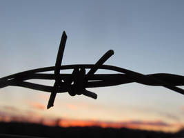 Barbed Wire by RicochetRosie