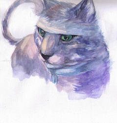 Miaow :3 by PurpleHope