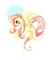 Fluttershy by amwah