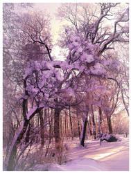 winter tree by Beautiful-Disgrace