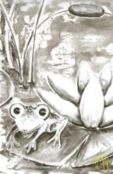 Animals: Frog by Naikiria