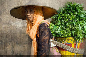 Indonesian Lady by mjbeng