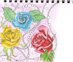 Rose Blue Yellow an Red by BoxcarChildren