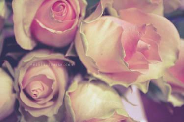 Royal Roses I by reixii