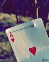Ace by Illuzie