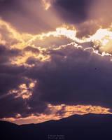 Fly Away by Elvazur