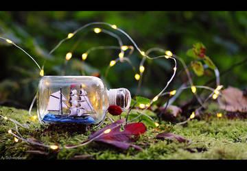 Autumn Adventure by Limaria