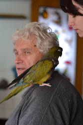 grandpa with his parrot by Luczynka