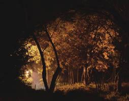 Down a spiral night by Gevio