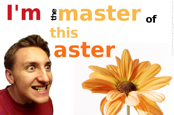 I'm the master of this aster by wodny