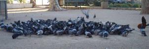 Feeding Frenzy by dracontes