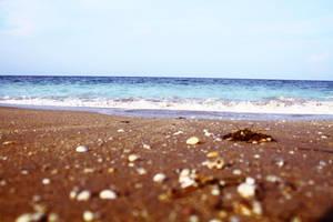 Beach by summerxstars