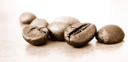 coffee by nippon-san