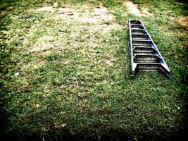 ladder on grass by imapioneer