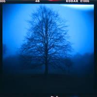 46 Kodak by PoLazarus2
