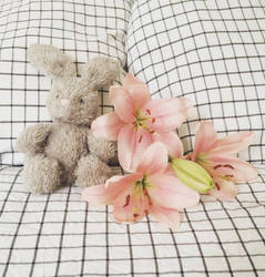 Plushie and Lilies by SerendipityDesT