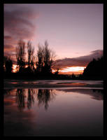 Rose Tinted Skies by maxwell-heza
